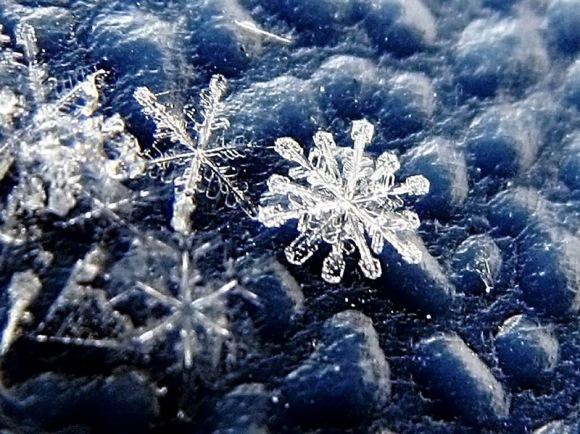 ice-foto-topic-snowflake2-4